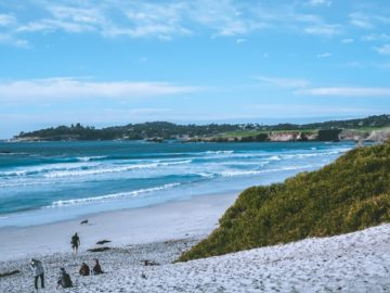 carmel beach coast line