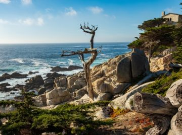 17-mile-drive-pebble-beach
